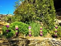Sault, Aroma'Plantes, la piantoteca