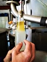 Sault, Aroma'Plantes, l'olio essenziale di lavanda si separa dall'acqua