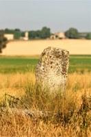 Via Domizia, pietra miliare di Tavernoure, Forcalquier © ADT04 M Boutin