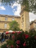 Aix-en-Provence, mercato dei fiori in piazza del Municipio © Sonia Gonzini