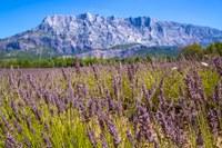 La Montagne Sainte Victoire © S. Spiteri