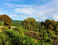L'orto agroecologico dell'abbazia di Valsaintes