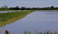 Mas de Valériole - La campagna allagata dalle canalizzazioni idriche