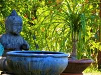 La malle des Indes, vasca da giardino