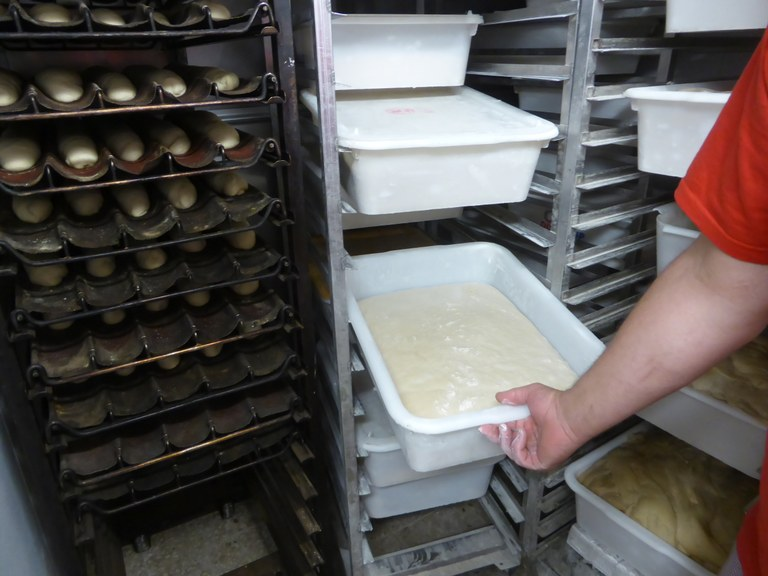 Blé meunier; l'impasto del pane a riposo dopo la prima lavorazione