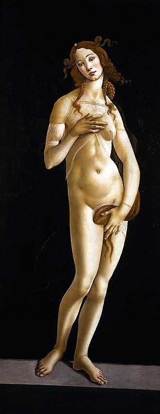 Botticelli, la Venere di Torino