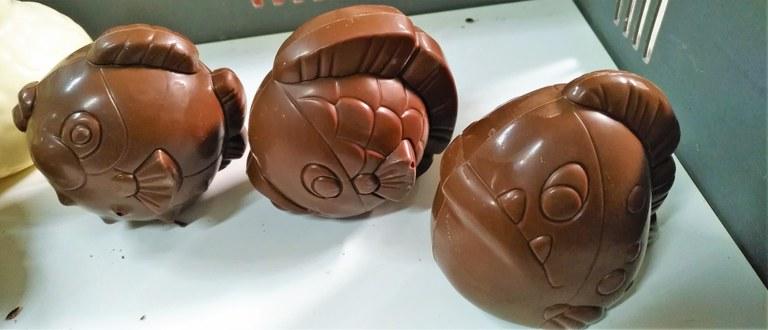 Chocolaterie Castelain, i pesci realizzati dai bambini aspiranti cioccolatieri.jpg