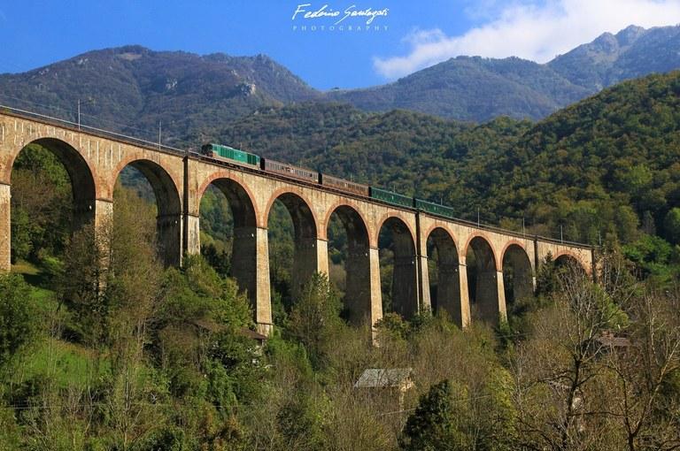 Ferrovia Cuneo-Ventimiglia-Nizza, uno dei viadotti più lunghi © Federico Santagati