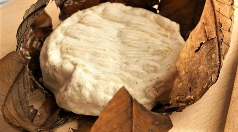 Forma di banon in foglie di castagno
