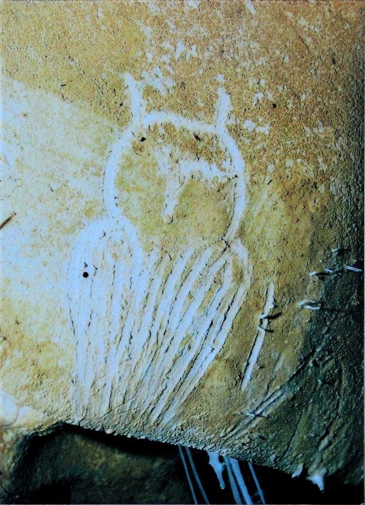 Grotta di Chauvet, figura di gufo