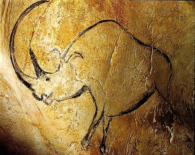 Grotta di Chauvet, figura di rinoceronte