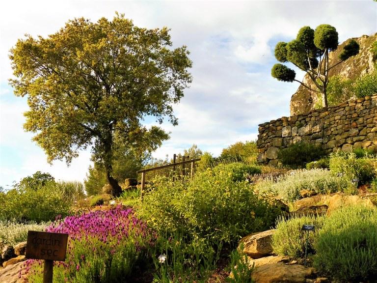 Il giardino secco di Valsaintes