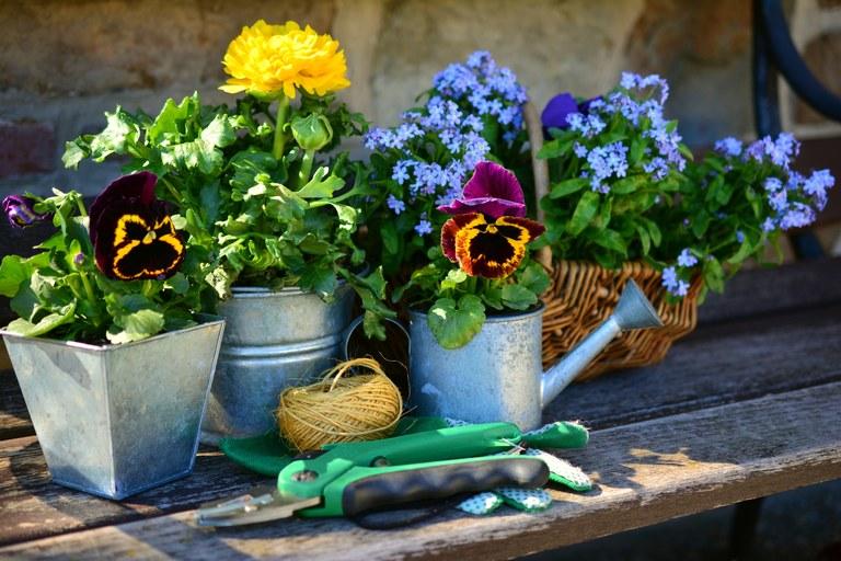 Il piacere di coltivare i fiori