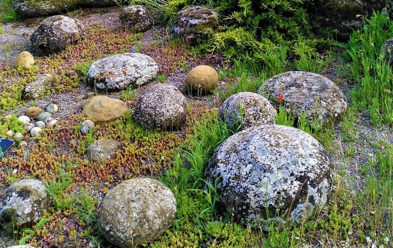 Le uova di pietra della roccia Dragon a Valsaintes
