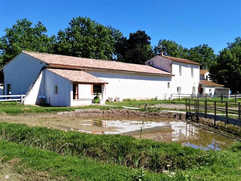 Maison du Riz, Albaron