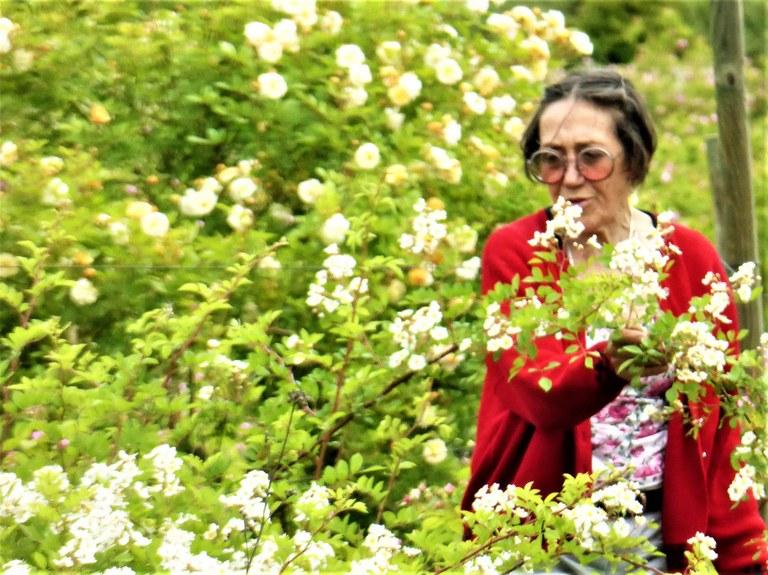 Roseline Giorgis tra le sue rose