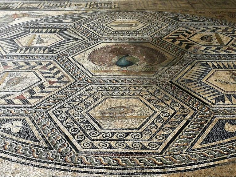 Vaison-la-Romaine, il mosaico del pavone