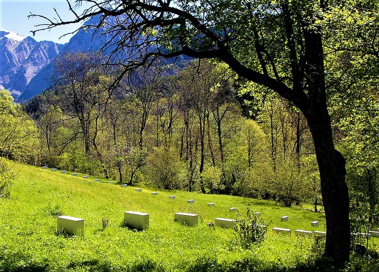 Viapac, Edge-stones, di Richard Nonas, particolare © Alpes-de-Haute-Provence Tourisme