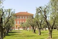 Museo Matisse a Nizza - Foto: © H. Lagarde, OTC Nice
