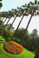 Parco Vigier a Nizza - Foto: © OTC Nice